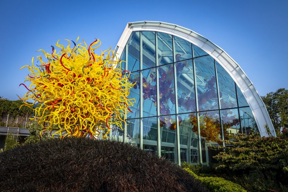 Dale Chihuly, Pioneering Glass Artist and Seattle Icon, Is Building a Major Legacy