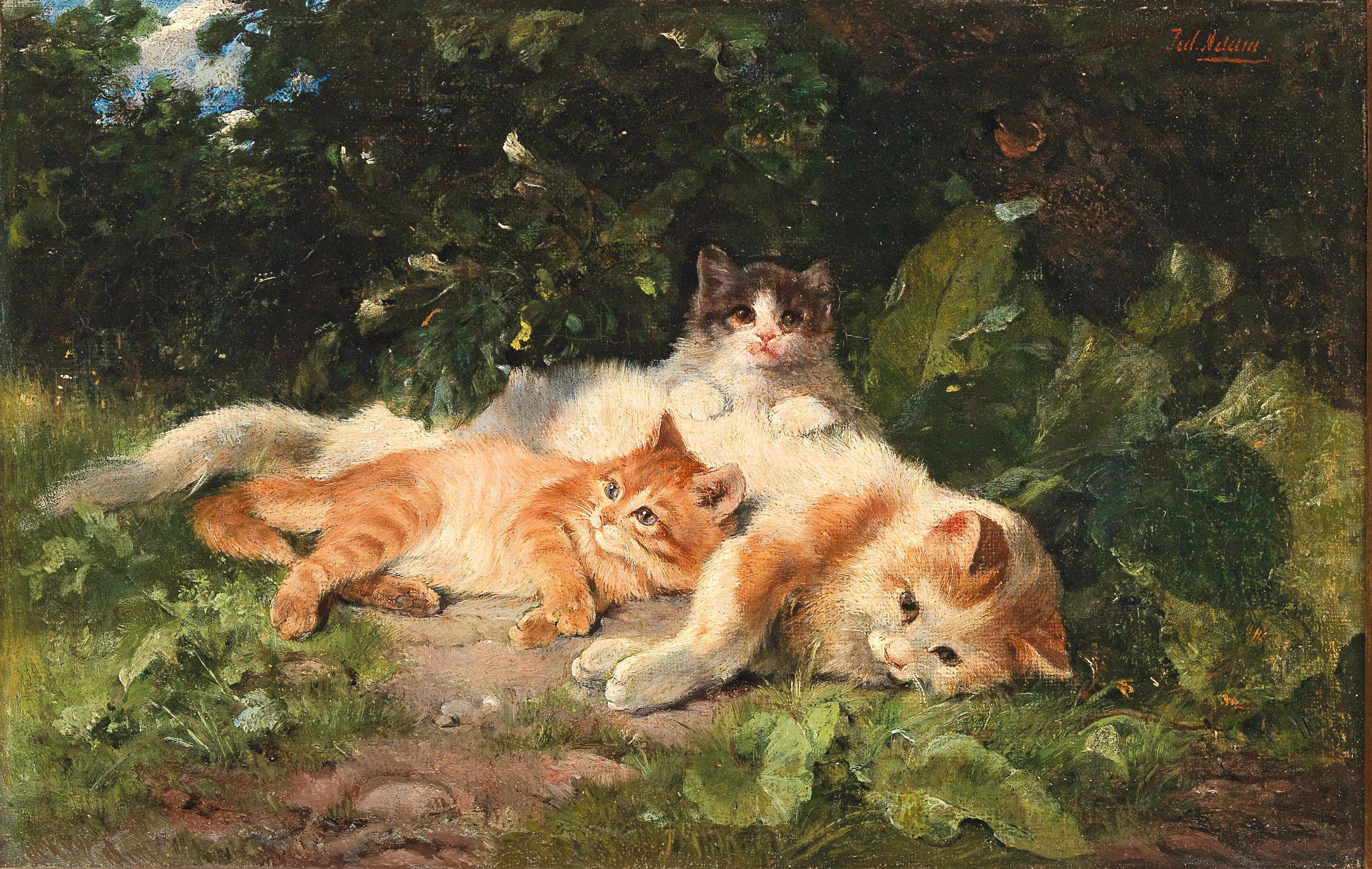 """نگاهی به آثار """"Cats Adam"""""""