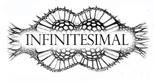 Infinitesimal Microscopy for artists Fall or Winter 2019