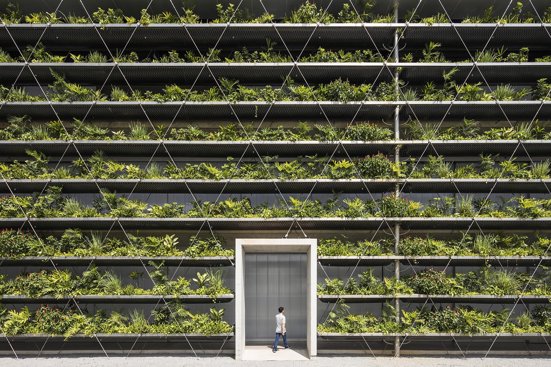 پوشش گیاهان سبز در نمای خارجی کارخانه ای در ویتنام