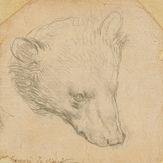 حراج خرس میلیون پوندی «داوینچی»